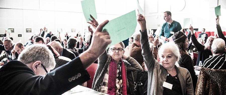 Afstemning på landsmøde 2016